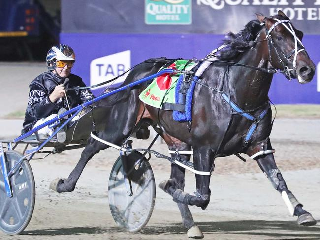 Cool as you like: Lazarus effortlessly takes out the 2017 Victoria Cup in course record time. Picture: Stuart McCormick