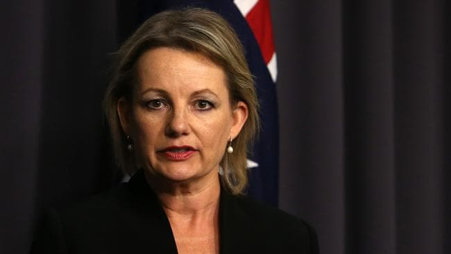 Still going ... Health Minister Sussan Ley is still talking with doctors about Medicare reforms after the government dumped its controversial $5 GP fee. Picture: Kym Smith