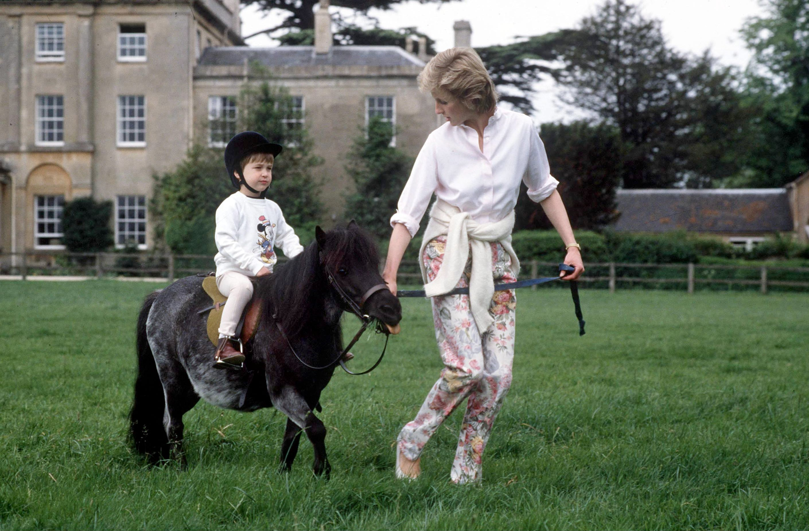 Diana And William Pony Highgrove