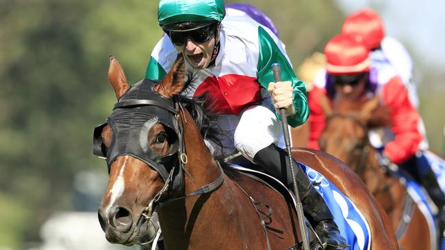 Castelvecchio is the highest-rated three-year-old in Australia. Picture: Getty Images