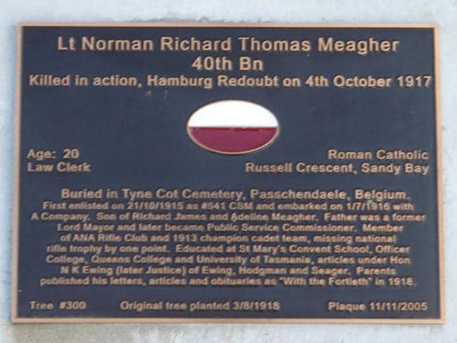 Mercury 100 days of heroes. World War I soldier Norman Meagher is commemorated at tree #300 on the Soldiers' Memorial Avenue in Hobart
