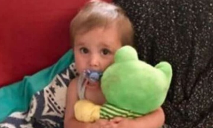 Police doubt toddler died from spider bite
