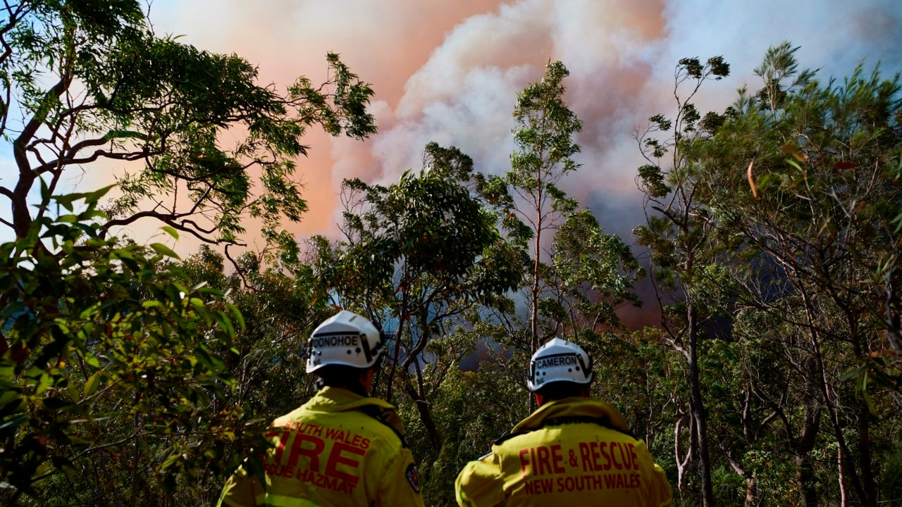 State of Emergency called as heatwave fans bushfires