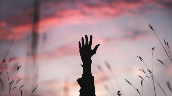 Raise your hand for the life you want. Photo: Unsplash/Brian Minear