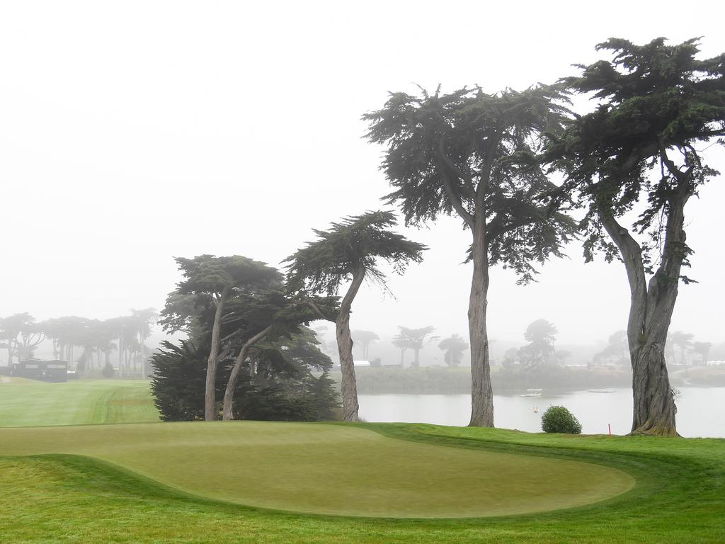 A general view of the 18th green at TPC Harding Park. (Photo by Harry How/Getty Images)