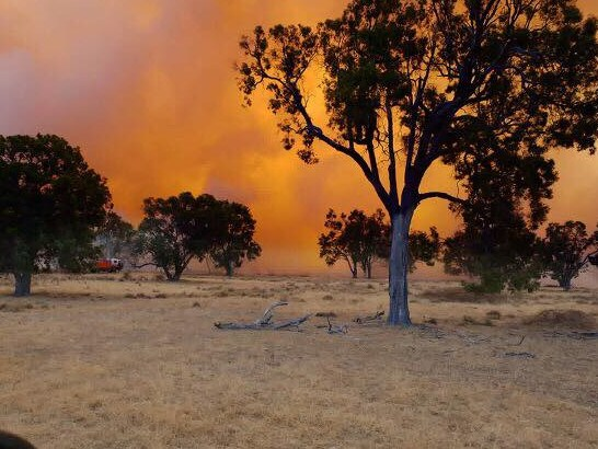 Bushfires rage in Tingha on Wednesday morning. Picture: Adam Marshall/Facebook