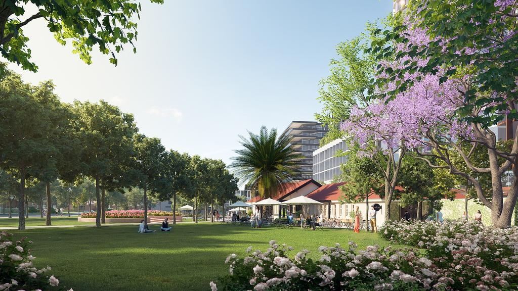 How Tote Park might look.