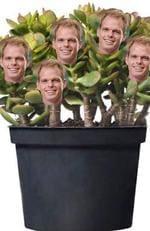 Jarrod Bachelorette pot plant meme