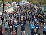 The start line of the Westpac City-Bay fun run. Photo: Naomi Jellicoe.