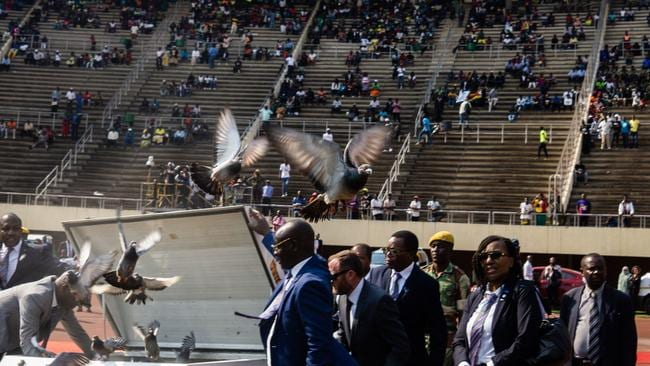 A release of 95 doves honouring Mugabe.