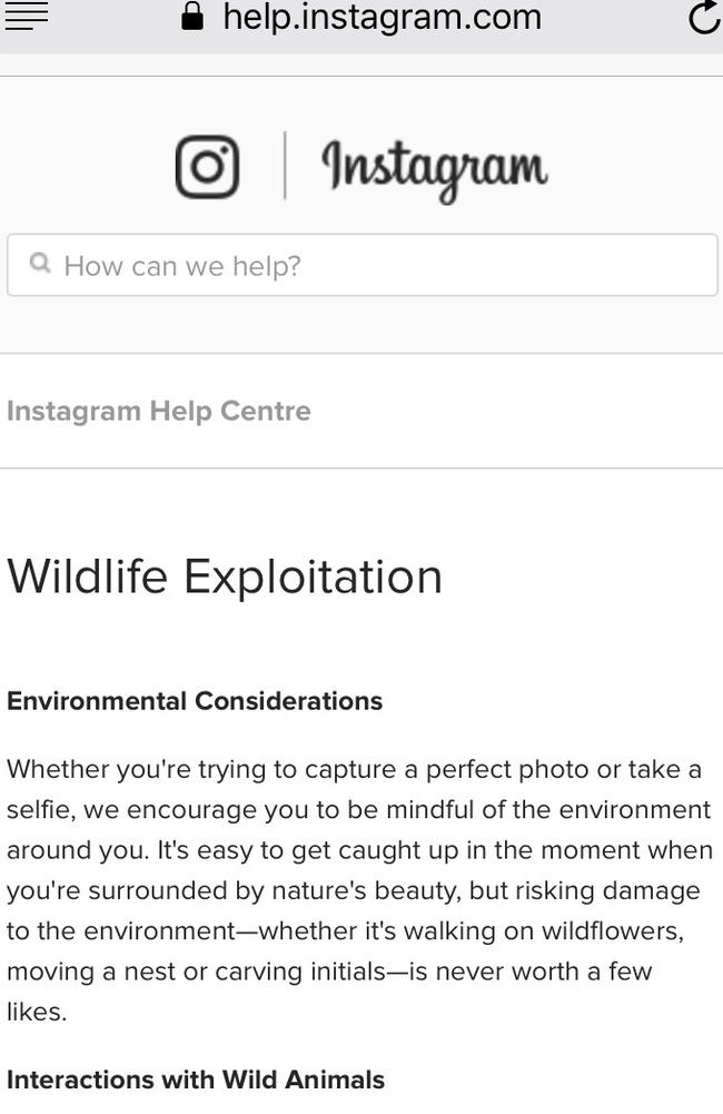 Users can then find out more about the exploitation of animals.