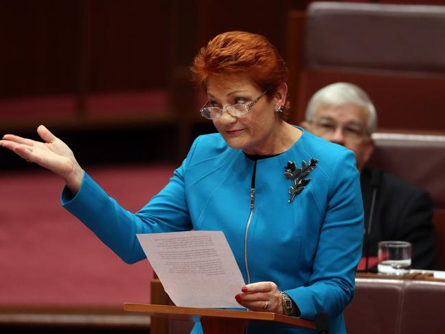 And another thing ... Pauline Hanson also targeted welfare recipients in her maiden speech in the Senate. Picture Gary Ramage