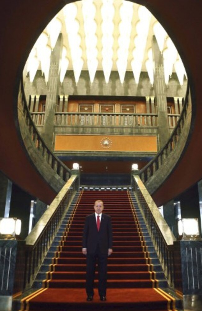 Turkish President Recep Tayyip Erdogan poses inside the presidential palace. Picture: AFP/Adem Altan
