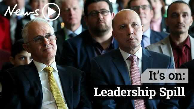 Leadership Spill: Does Australia want Peter Dutton as PM?
