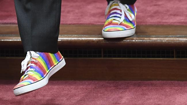 Australian Greens leader Richard Di Natale wears rainbow-coloured shoes during the same-sex marriage debate in the Senate. Picture: AAP Image/Lukas Coch