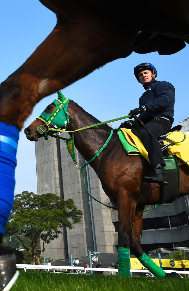 Zac Purton has been crowned king of the Longines International Jockeys Championship. Picture: Vince Caligiuri/Getty Images