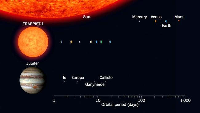Out of this world ... The TRAPPIST-1 red dwarf star solar system and its seven 'Earth-like' planets compared to Jupiter and its moons, and our own Solar System. Source: NASA