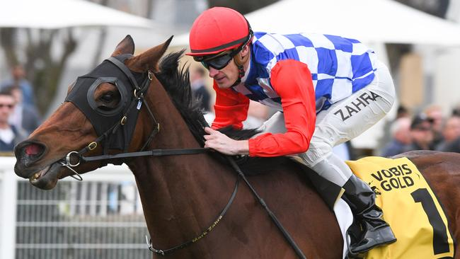 Sopressa won her final race at Caulfield before heading to stud. Picture: Getty Images