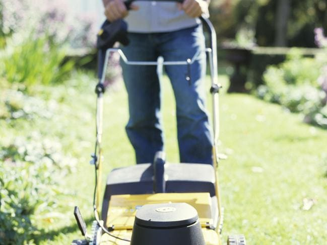 Getting some to mow your lawn could cost as little as $25 an hour.