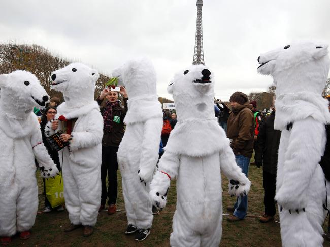 Polar position ... Demonstrators dressed-up as polar bears take part to a rally called by several Non Governmental Organisations (NGO) to form a human chain on the Champs de Mars near the Eiffel Tower. Picture: AFP