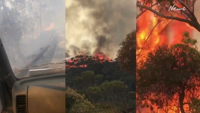 'I can't see': Passenger films alarming escape from bushfire