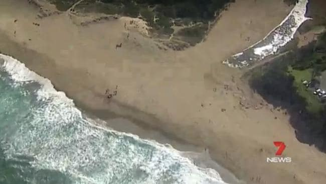 Surfers, life savers and paramedics fought to save the lives of a swimmer who was pulled from the sea at Stanwell Park south of Sydney this afternoon.