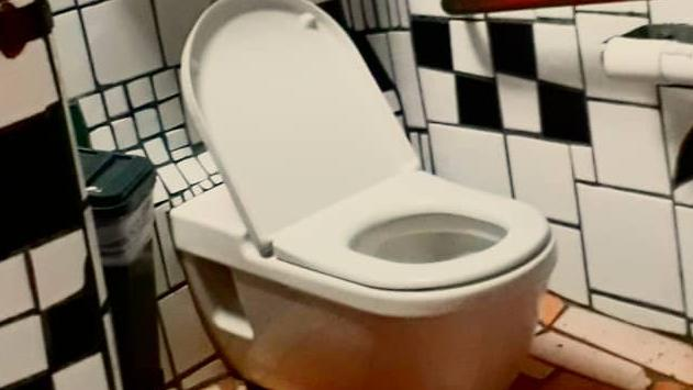 This may well be one of the most popular toilet's in the world
