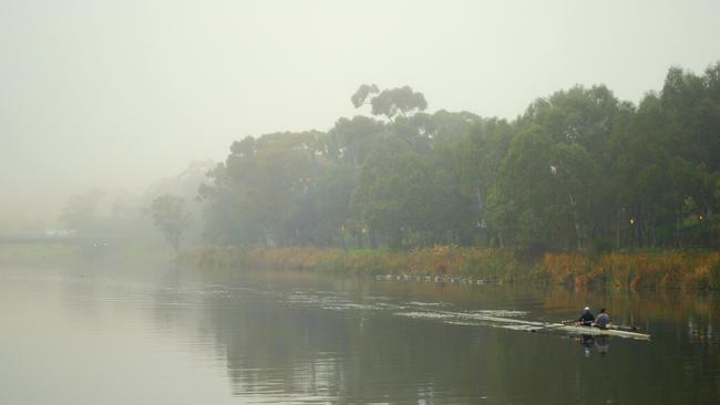 Rowers on the River Torrens. Picture: Liz Neumann, sent in for our Winter Is Stunning gallery on Facebook.