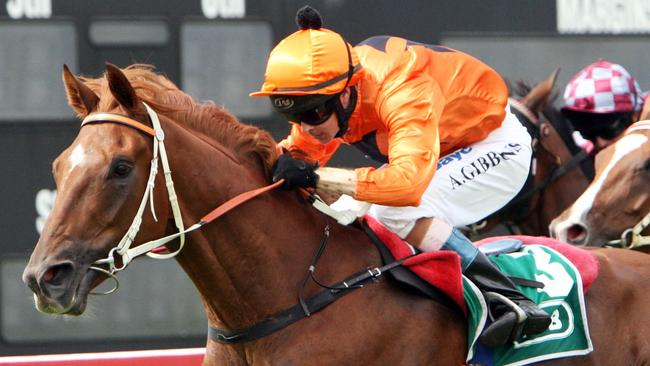 Jockey Andrew Gibbons could have a big day out at Taree with a strong book of rides.