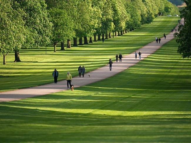 The Long Walk at Windsor Castle will be packed with happy onlookers. Picture: Christopher Furlong/Getty Images