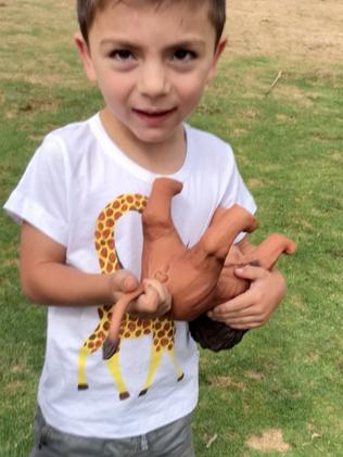Hakan, 4, was gifted a rather interesting lion from his mum.