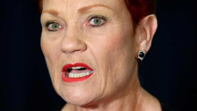 Pauline Hanson unleashes on airlines over Welcome to Country mid-flight