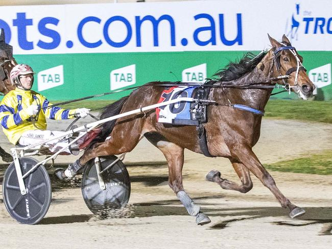 Everything needs to fall in place for Tough Monarch but he does have a favourable draw.