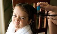 STUDY: 98% of head lice are now resistant to common treatments