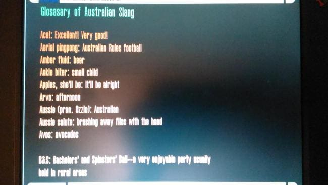 Just what you expect to find on a used laptop — Aussie slang.