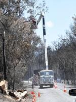 Tree loppers clear unstable trees after recent bush fires at Cooroibah. Photo Patrick Woods / Sunshine Coast Daily.
