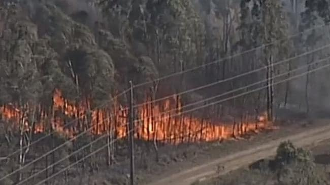 The fire encroaches through bush near Casula. Picture: 9 News