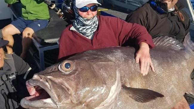 Sue Elcock with the massive groper she caught while fishing. Picture: Brendon Shinnick/Reel Force Charters