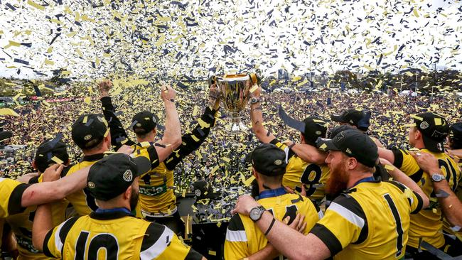 The Melbourne aquarium has celebrated Richmond's premiership victory. Picture: Tim Carrafa.