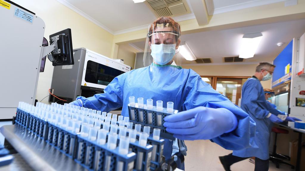 Medical scientist Belinda Price prepares vials for coronavirus test samples at the SA Pathology laboratory in Adelaide last week. Picture: Mark Brake