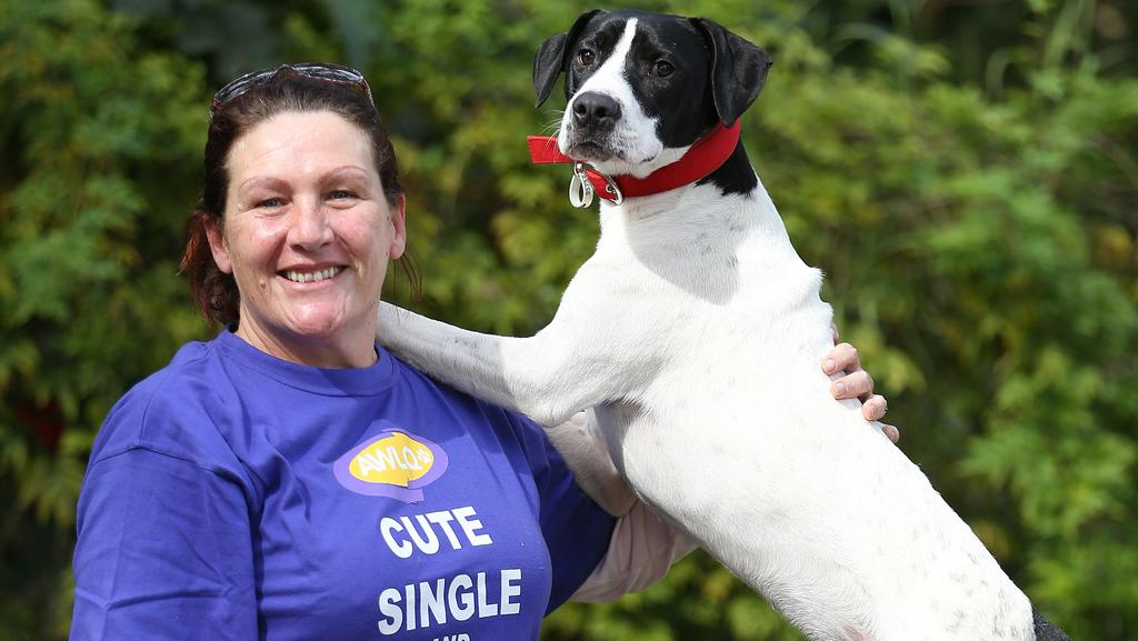Help Out Animals In Need And Become An Awlq Volunteer Gold Coast Bulletin