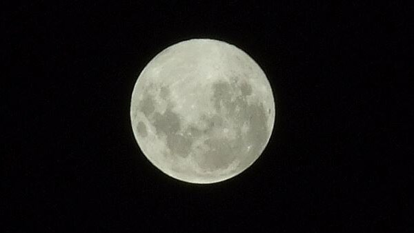 Biggest supermoon of the year lights up sky