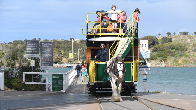 Victor Harbor's horse-drawn tram is one of the last of its kind in the world. Picture: Tricia Watkinson