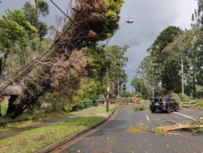 Damage in Carlingford after the afternoon storm in Sydney. Picture: Yixiang Gan