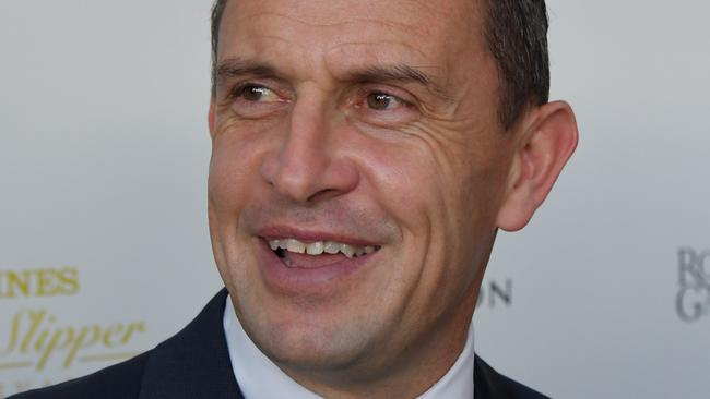 Trainer Chris Waller has been impressed by Enticing Star since she arrived at his Rosehill stable from WA. Picture: AAP
