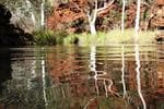 <b>20. KARIJINI NATIONAL PARK, WA: </b>Dales Gorge, in Karijini National Park, represents the pure essence of Australia, remote, rugged, diverse and incredibly beautiful. Our visit left us with never-to-be-forgotten memories. Picture: Carole Dunn, NSW