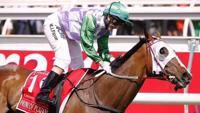 Who backed Prince of Penzance in 2015? Picture: Wayne Ludbey