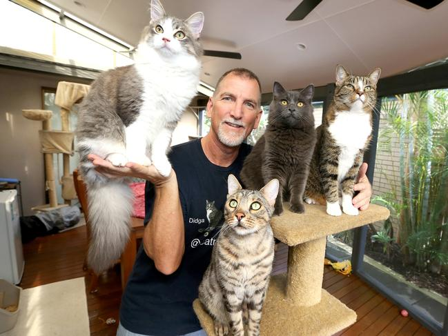 Robert Dollwet at his Tweed Heads home with his four cats: Jeb, Bindi, Boomer and Didga. Picture: Mike Batterham