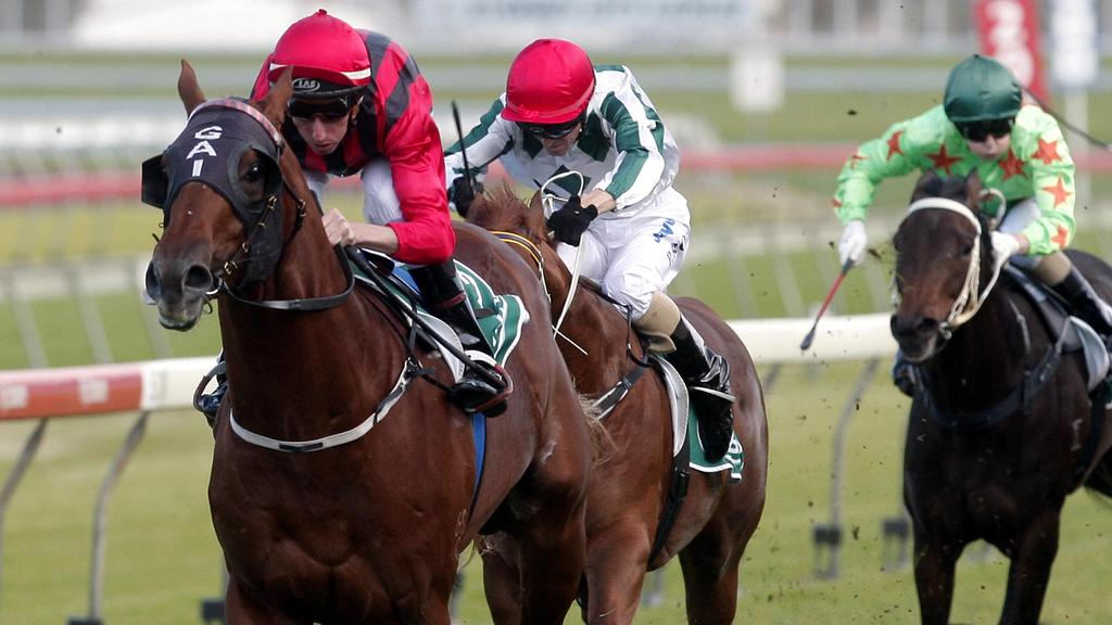 Gold Bracelet is by Racehorse Strategic, seen here winning on debut at Randwick in 2008.