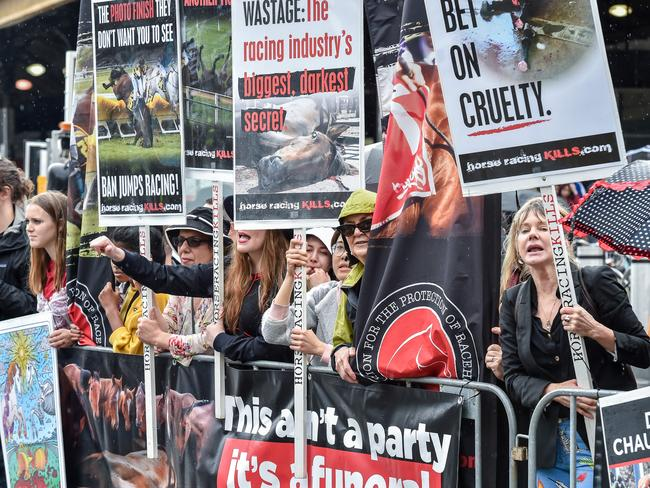 Anti horse racing activists protest the parade. Picture: Jake Nowakowski